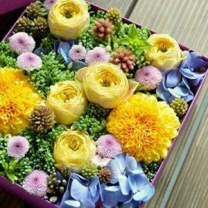 cvetochnye-korobochki kiev 8