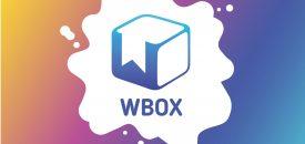 WBOX_мастер-класс в коробке_набор для творчества_ онлайн мастер-класс